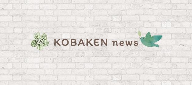 KOBAKEN news